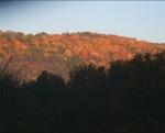Fall in Upstate NY