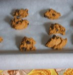 Cookies - Fresh from the Oven