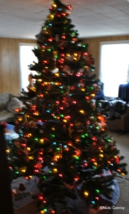 Tree All Decked Out