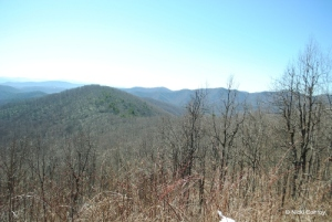 blueridge 18