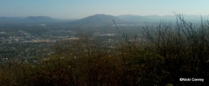 Roanoke from Mill Mountain