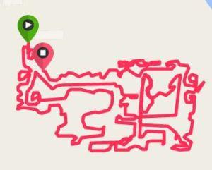 Garmin track of the maze